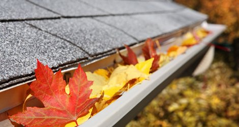 5 Big Damages Caused By The Clogged Eavestrough